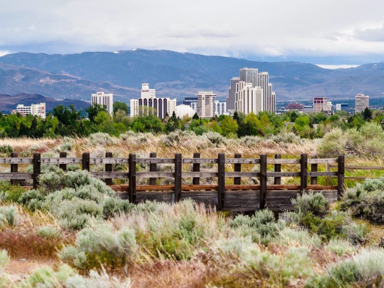 downtown Reno from a park