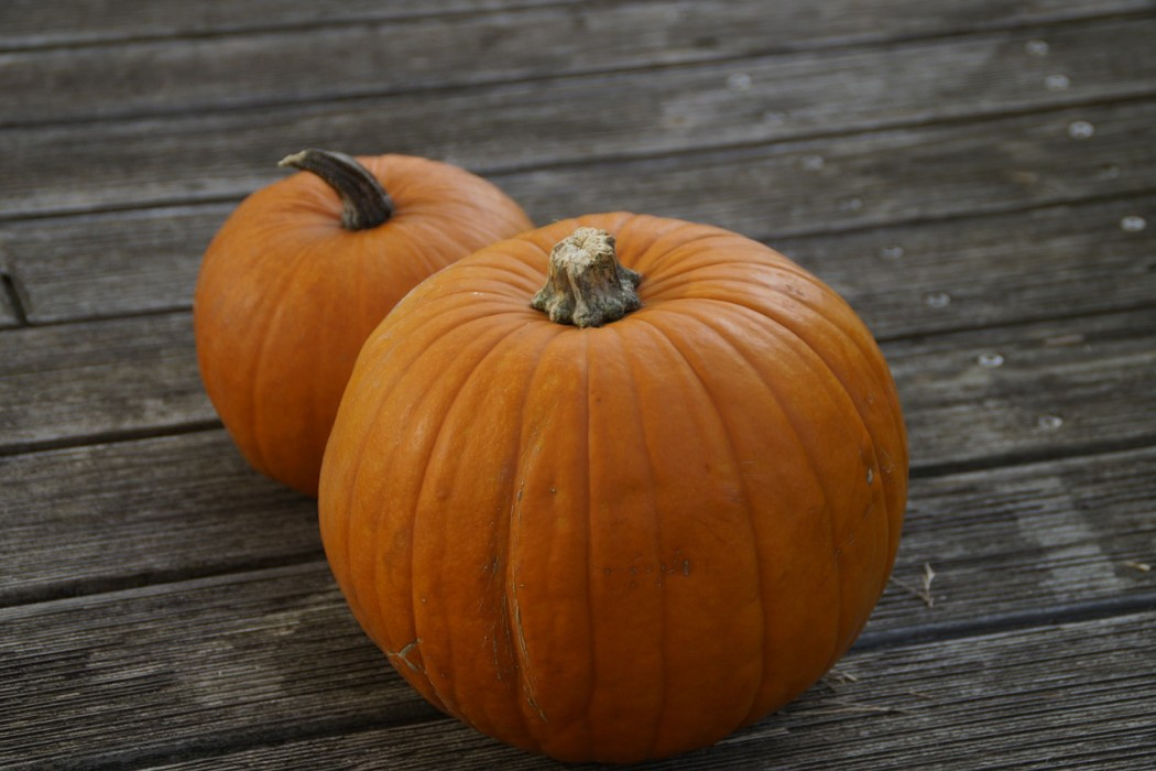 A small and large pumpkin